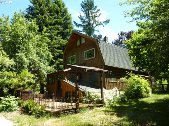 55883 E King Rd, Mckenzie Bridge, OR 97413 (MLS #19558960) :: Townsend Jarvis Group Real Estate