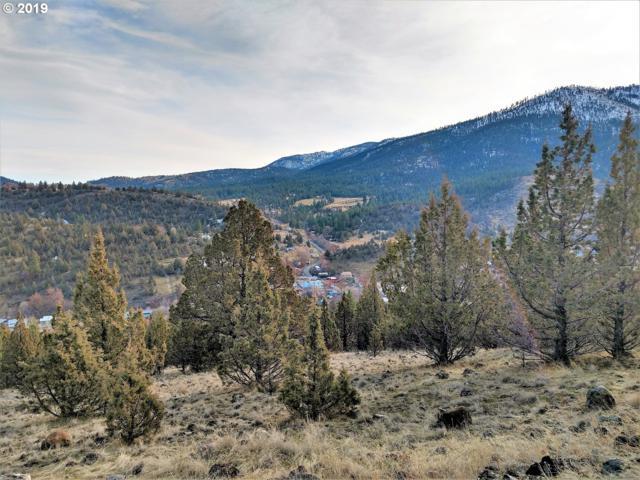 Cougar Ridge Rd, Canyon City, OR 97820 (MLS #19561751) :: Fox Real Estate Group
