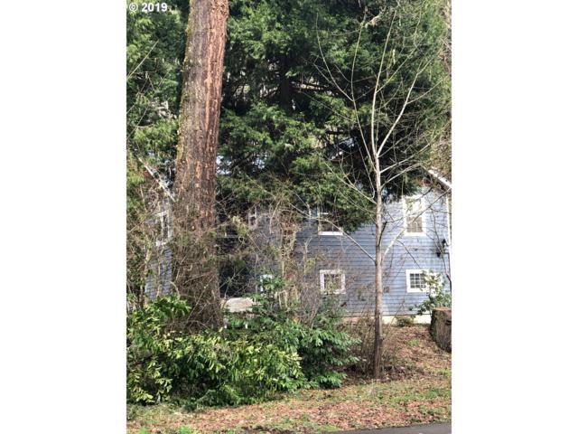 47277 Mckenzie Hwy, Vida, OR 97488 (MLS #19562102) :: The Galand Haas Real Estate Team