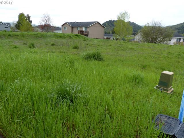 360 NE Rose Ridge Dr, Winston, OR 97496 (MLS #19573353) :: TLK Group Properties