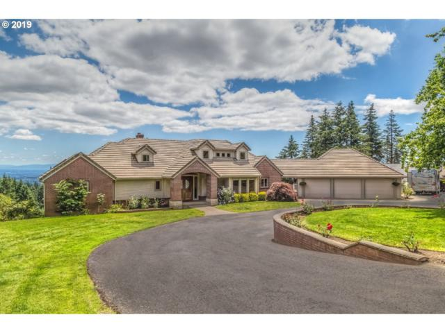 16860 SW Parrett Mountain Rd, Sherwood, OR 97140 (MLS #19576469) :: Matin Real Estate Group