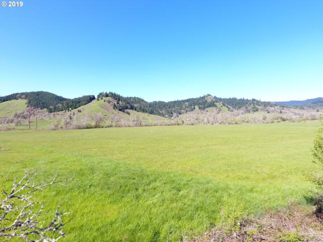 1536 Scotts Valley Rd, Yoncalla, OR 97499 (MLS #19584445) :: Gregory Home Team | Keller Williams Realty Mid-Willamette