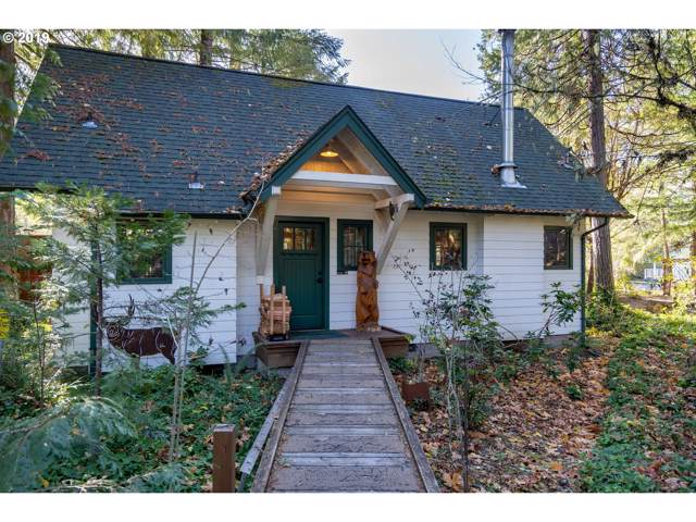 54428 Mckenzie River Dr, Blue River, OR 97413 (MLS #19591429) :: Premiere Property Group LLC