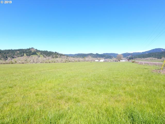 0 Scotts Valley Rd, Yoncalla, OR 97499 (MLS #19592566) :: Townsend Jarvis Group Real Estate