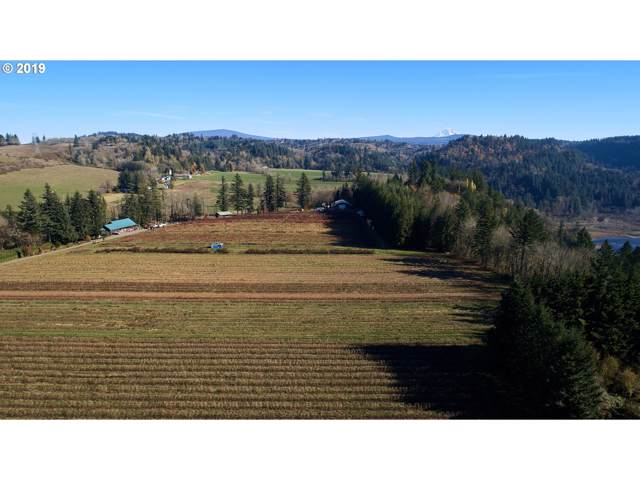 36403 SE Gordon Creek Rd, Corbett, OR 97019 (MLS #19613183) :: Matin Real Estate Group