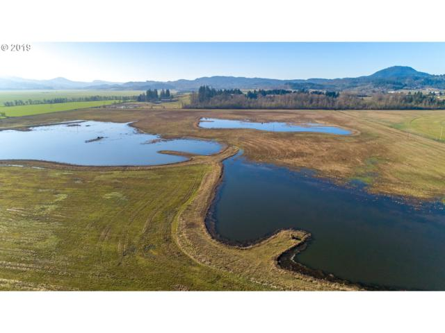 Ricketts Rd, Creswell, OR 97426 (MLS #19614330) :: The Galand Haas Real Estate Team