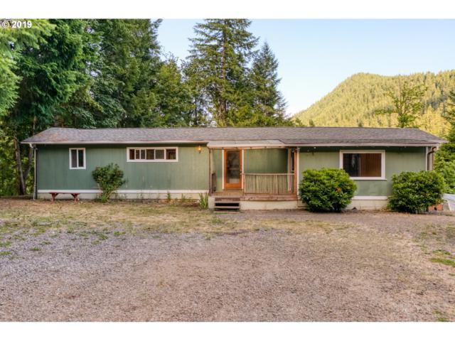 49959 Mckenzie Hwy, Vida, OR 97488 (MLS #19633484) :: The Galand Haas Real Estate Team