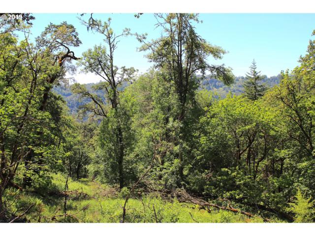 272 Deer Fern Way, Roseburg, OR 97470 (MLS #19636952) :: Townsend Jarvis Group Real Estate