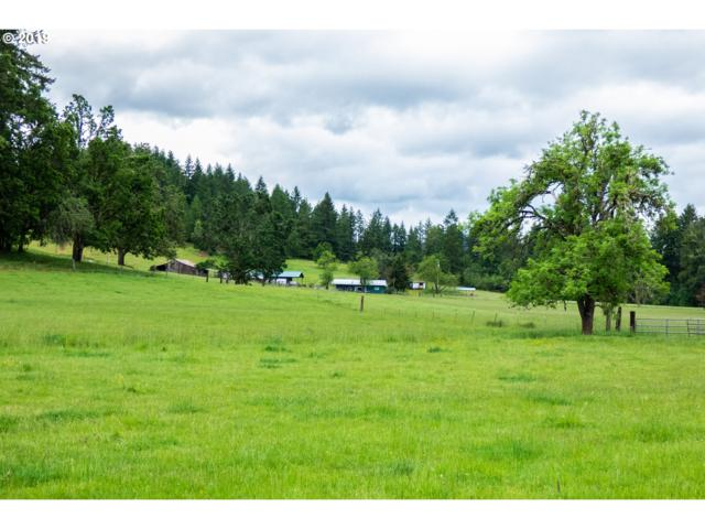 83588 Rattlesnake Rd, Dexter, OR 97431 (MLS #19646237) :: Team Zebrowski
