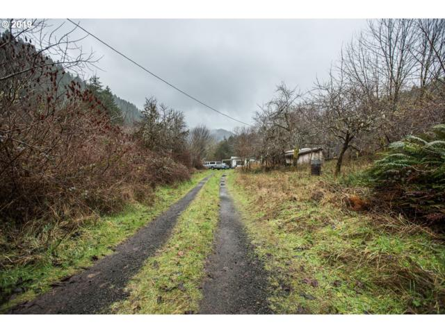 12114 E Mapleton Rd, Mapleton, OR 97453 (MLS #19649901) :: Townsend Jarvis Group Real Estate