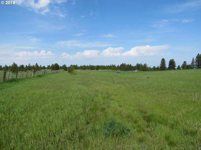 Hodgeson Rd, Weston, OR 97886 (MLS #19651456) :: Song Real Estate