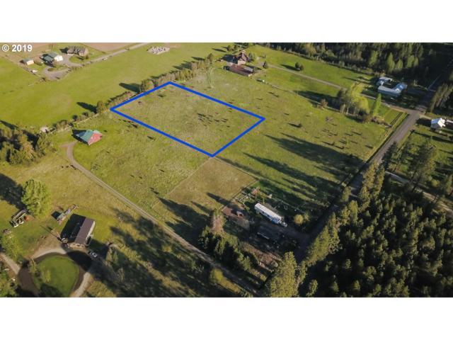 Mt. Adams Hwy, Glenwood , WA 98619 (MLS #19664770) :: Matin Real Estate Group