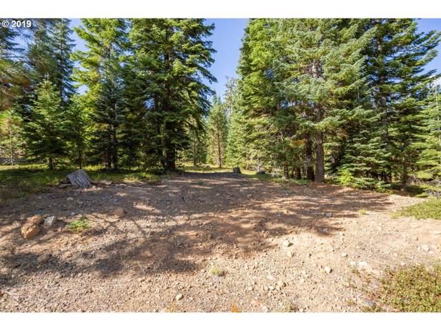 600 Tl Skiway Dr, Klamath Falls, OR 97601 (MLS #19669646) :: Song Real Estate