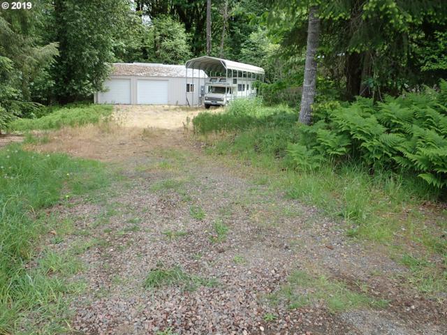 125 Lakewood Dr, Mossyrock, WA 98564 (MLS #19670155) :: The Sadle Home Selling Team
