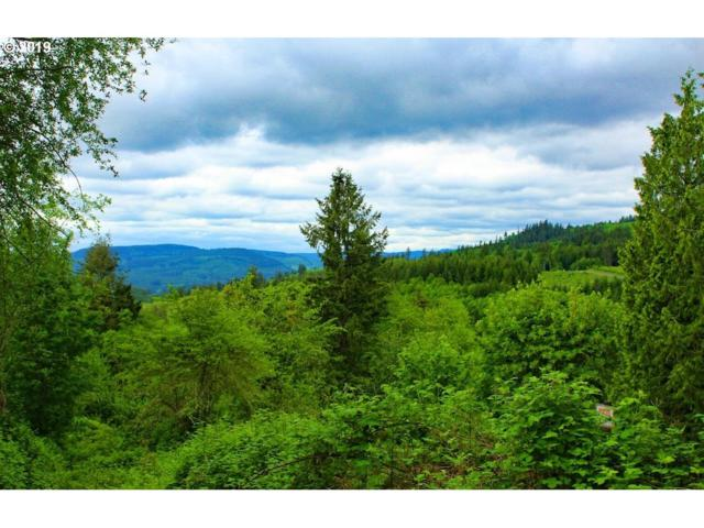 231 N Bodine Rd, Kelso, WA 98626 (MLS #19671521) :: The Galand Haas Real Estate Team