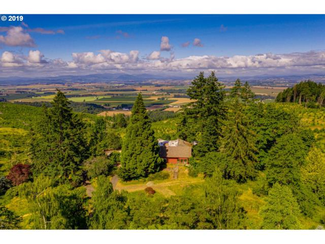 24140 SE Skyline Rd, Amity, OR 97101 (MLS #19676112) :: Townsend Jarvis Group Real Estate
