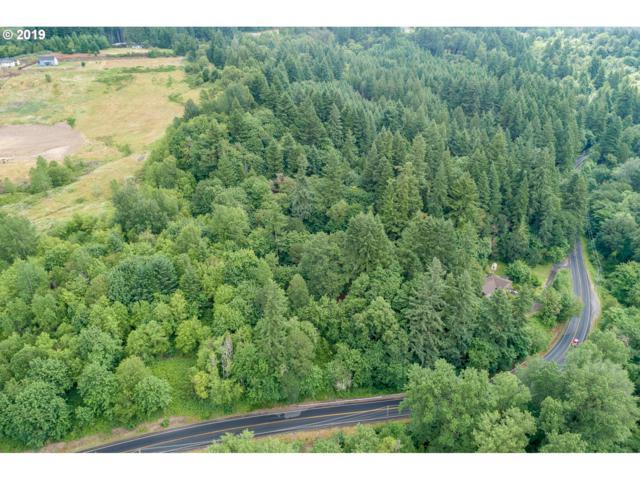 0 NW 59th St, Woodland, WA 98674 (MLS #19676656) :: R&R Properties of Eugene LLC