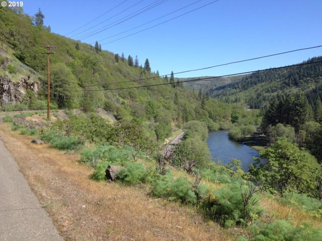 Maki, Klickitat, WA 98628 (MLS #19694169) :: The Lynne Gately Team