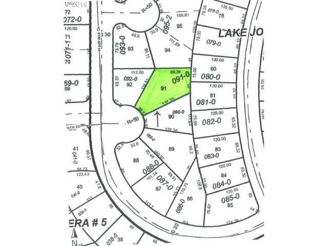 10913 Madrona Dr, Anderson Island, WA 98303 (MLS #19694944) :: Premiere Property Group LLC