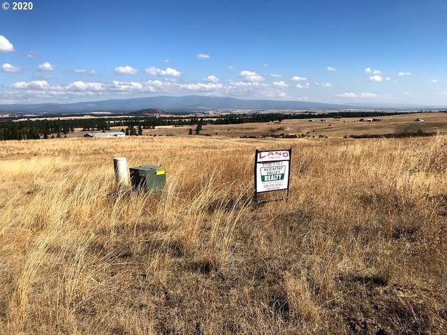 Palomino Dr, Goldendale, WA 98620 (MLS #20011840) :: Townsend Jarvis Group Real Estate