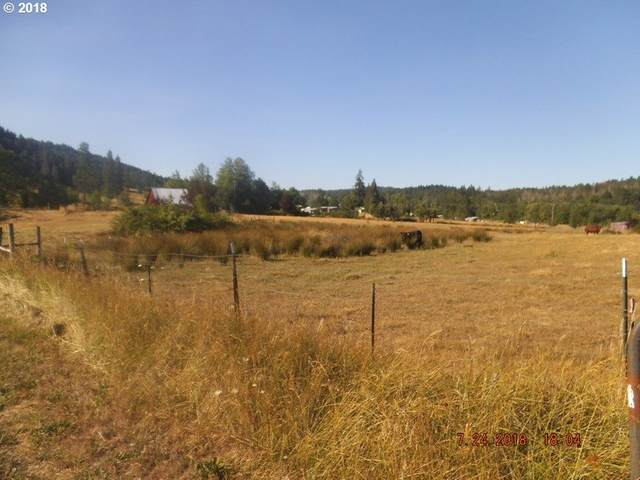 473 Orchard Ln, Roseburg, OR 97471 (MLS #20015675) :: Townsend Jarvis Group Real Estate