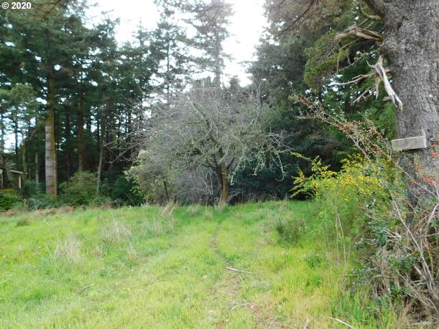 Arizona, Port Orford, OR 97465 (MLS #20015960) :: Gustavo Group