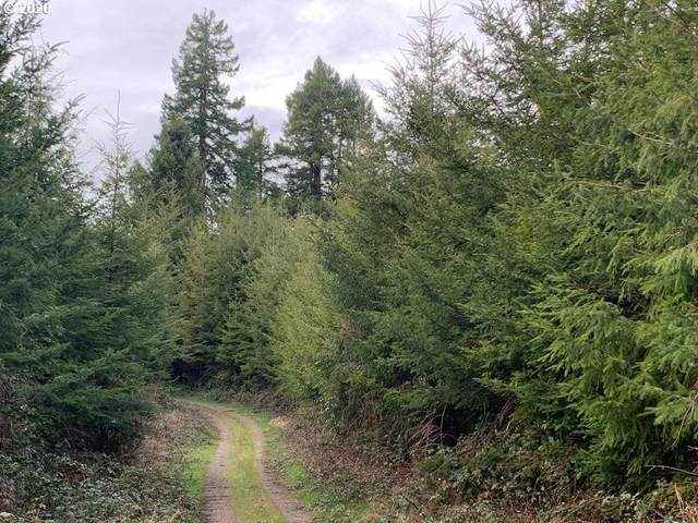 Sams Creek, Siletz, OR 97380 (MLS #20022883) :: Stellar Realty Northwest