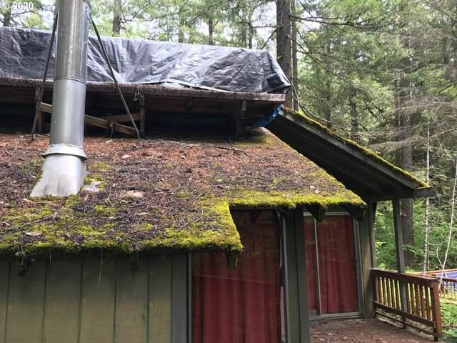 Cabin 86 Northwoods, Cougar, WA 98616 (MLS #20037498) :: Townsend Jarvis Group Real Estate