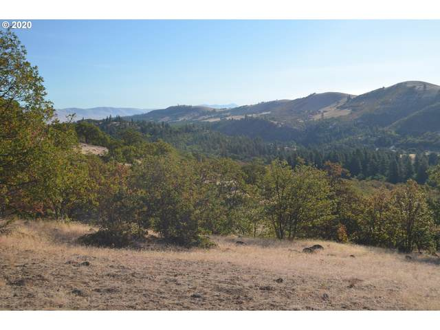 Browns Creek Rd, The Dalles, OR 97058 (MLS #20045107) :: Tim Shannon Realty, Inc.