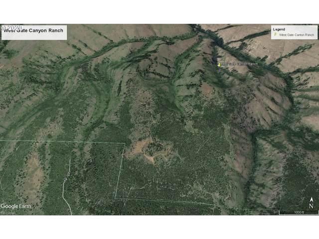 East Birch Creek Rd, Pilot Rock, OR 97868 (MLS #20047226) :: Song Real Estate