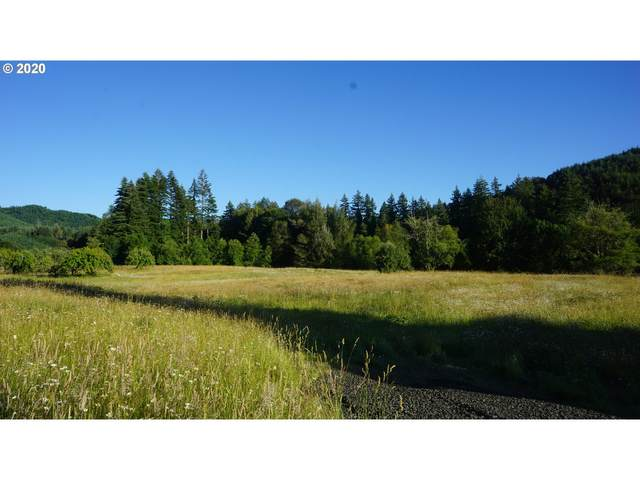 0 Hwy 42, Myrtle Point, OR 97458 (MLS #20049019) :: Townsend Jarvis Group Real Estate