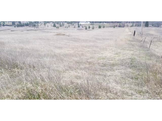 Lot 1 Spl 2019-03, Lyle, WA 98635 (MLS #20049402) :: Next Home Realty Connection