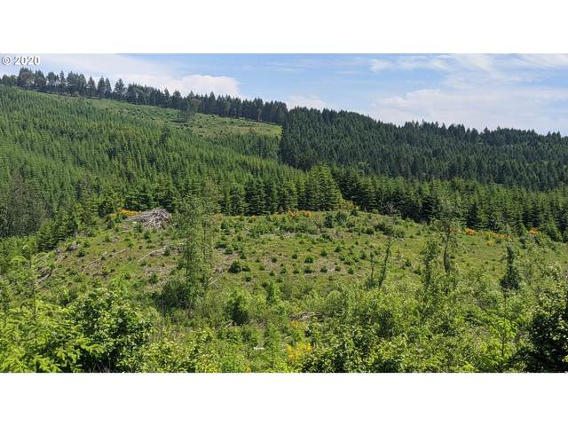NW Timmerman Rd #2, Forest Grove, OR 97116 (MLS #20051144) :: Townsend Jarvis Group Real Estate