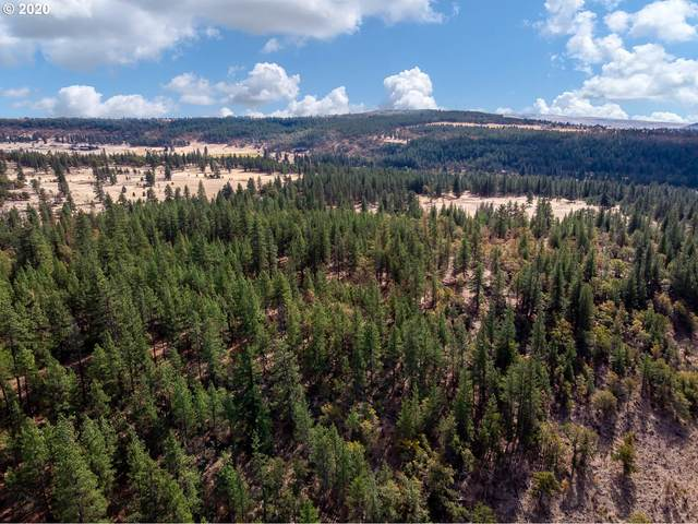 Hwy 97 Lot 1, Goldendale, WA 98620 (MLS #20052669) :: Beach Loop Realty