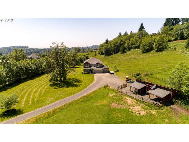 442 White Dog Rd, Washougal, WA 98671 (MLS #20054465) :: Matin Real Estate Group