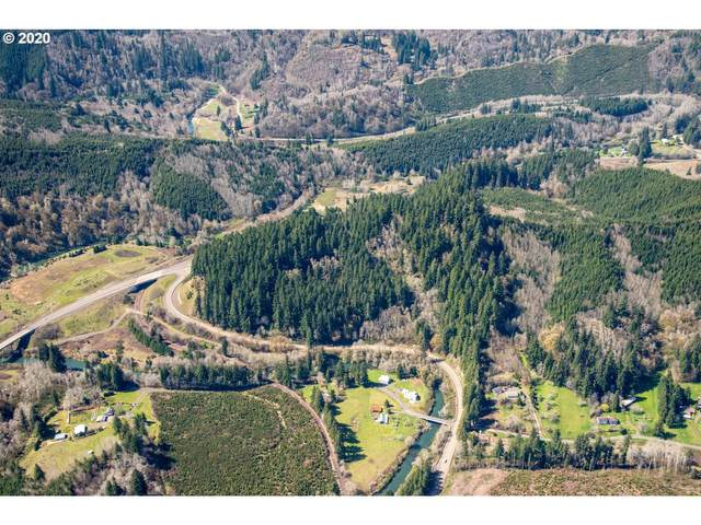 Crystal Creek Rd, Toledo, OR 97391 (MLS #20080561) :: Change Realty
