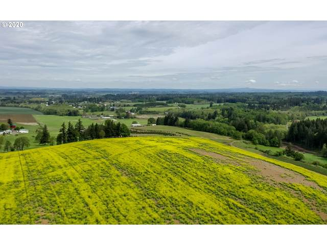 9900 S Wildcat Rd, Molalla, OR 97038 (MLS #20089766) :: Townsend Jarvis Group Real Estate