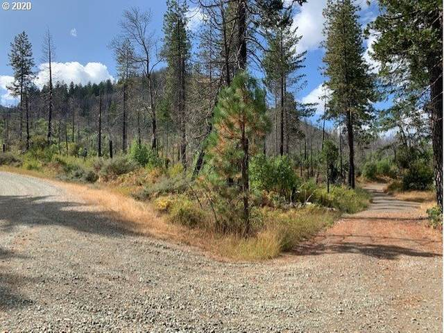 0 Cow Creek Rd, Glendale, OR 97442 (MLS #20095257) :: Townsend Jarvis Group Real Estate