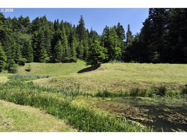 Coy Creek Rd, Gold Beach, OR 97444 (MLS #20100419) :: Cano Real Estate