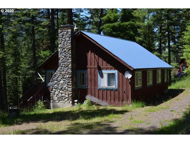 60668 Umatilla Rd, Wallowa Lake, OR 97846 (MLS #20101789) :: McKillion Real Estate Group