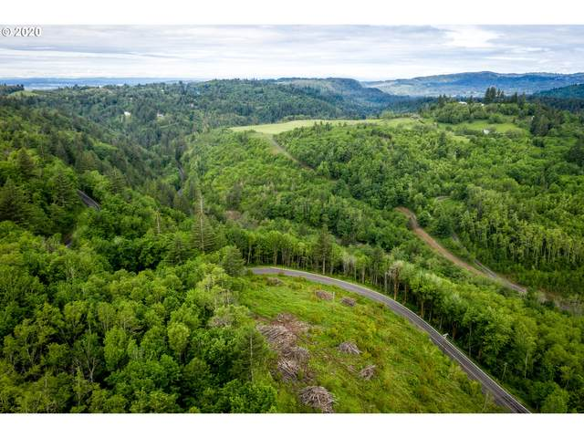 Mt Pleasant Road Rd, Washougal, WA 98671 (MLS #20102391) :: Duncan Real Estate Group