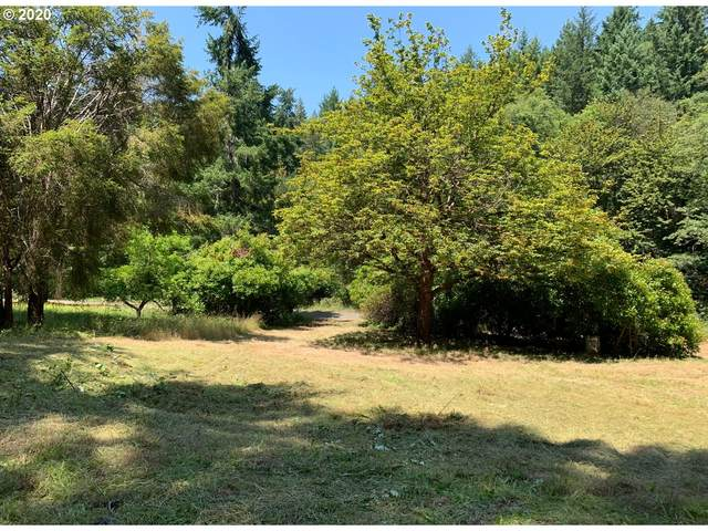 730 Bushnell Dr, Winston, OR 97496 (MLS #20102698) :: Townsend Jarvis Group Real Estate