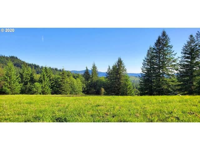 301 Helens Ln, Washougal, WA 98671 (MLS #20105349) :: Premiere Property Group LLC
