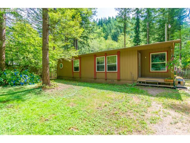 61 Dougan Falls Ln, Washougal, WA 98671 (MLS #20108863) :: Premiere Property Group LLC