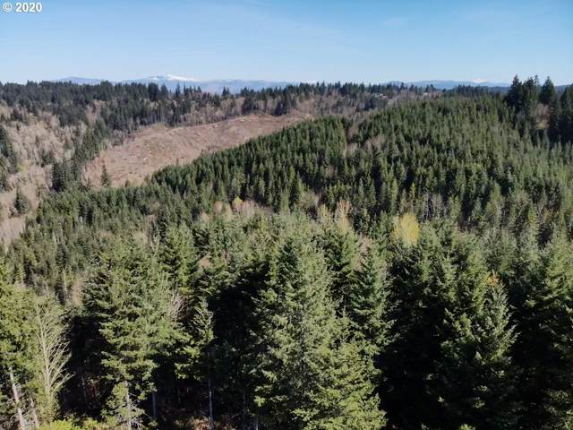 0 SE Louden Rd, Corbett, OR 97019 (MLS #20111547) :: Real Tour Property Group