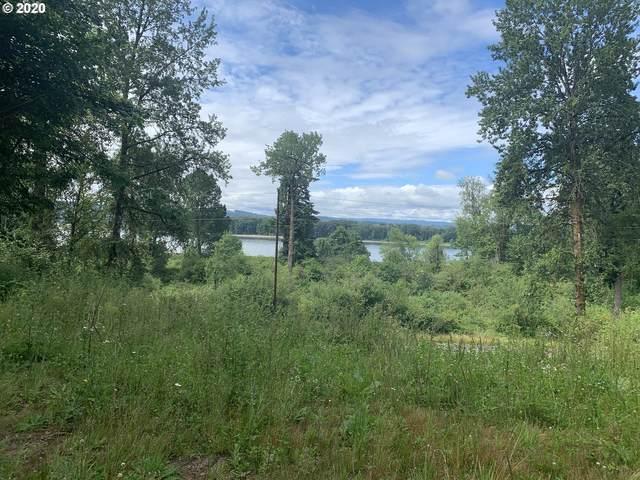 3 Dupont Dr, Kalama, WA 98625 (MLS #20113244) :: TK Real Estate Group