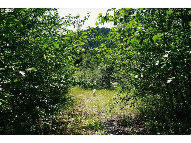 Bear Creek Lot 2,3, Carson, WA 98610 (MLS #20113245) :: Townsend Jarvis Group Real Estate