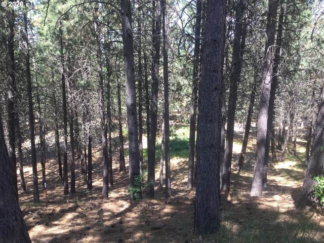 Crow Rd, Merlin, OR 97532 (MLS #20114131) :: Beach Loop Realty
