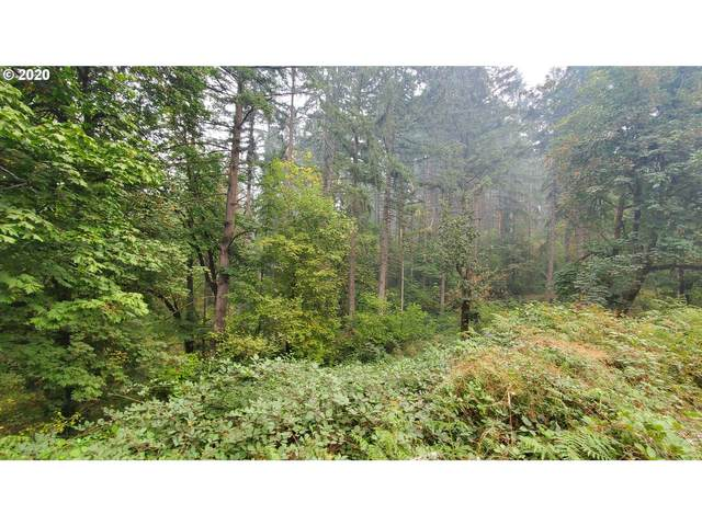 S 69th Pl, Springfield, OR 97478 (MLS #20121395) :: Song Real Estate