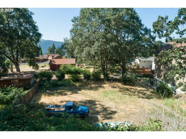 Overlander, White Salmon, WA 98672 (MLS #20146719) :: Next Home Realty Connection